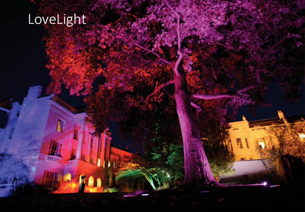 Lovelight1